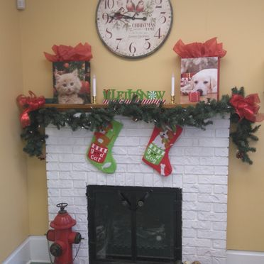Whitby Santa Claus Parade - Fireplace