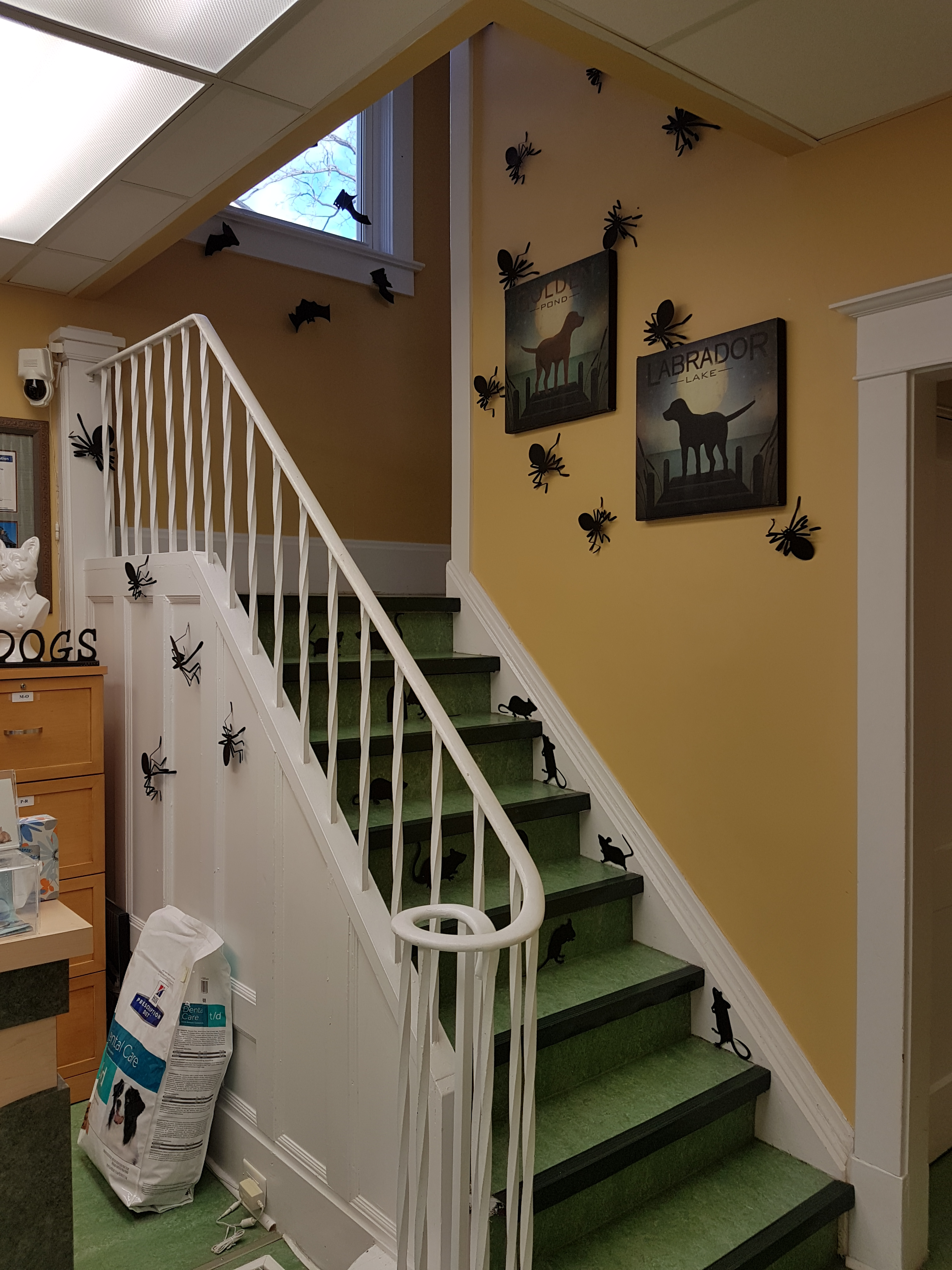 Halloween 2017 Decorations - Stairs