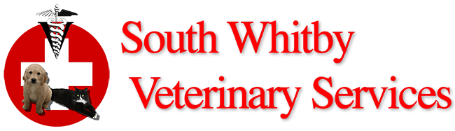 South Whitby Veterinary Services